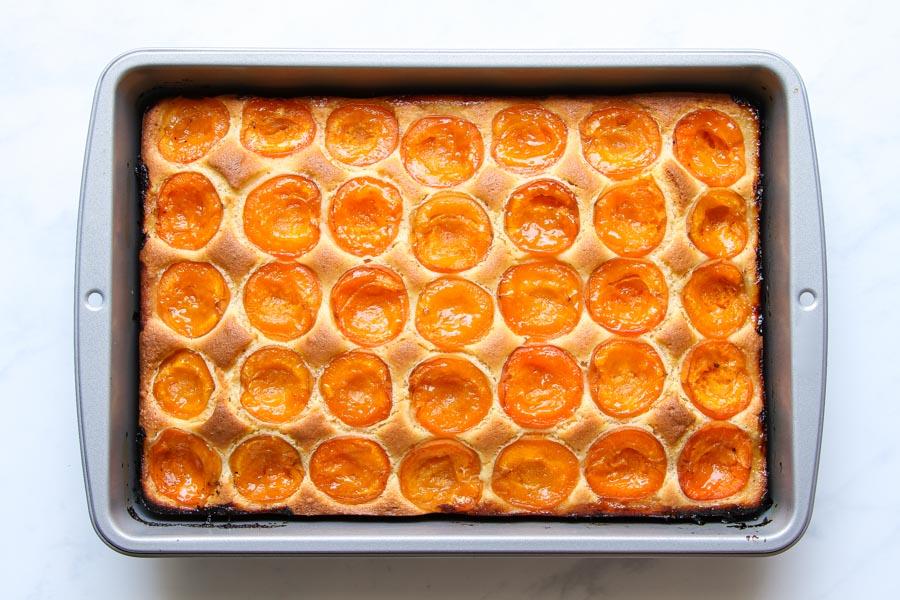 Saftiger Marillenkuchen vom Blech Rezept einfach