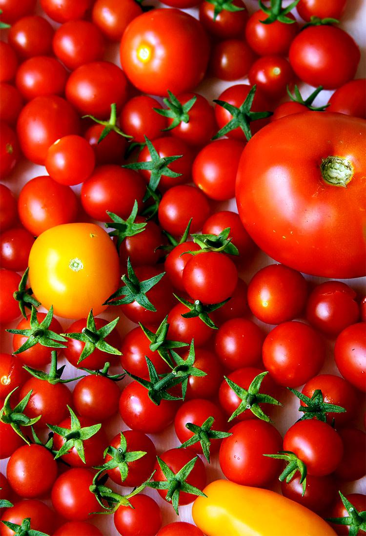 Rezept für fermentierte Tomatensalsa